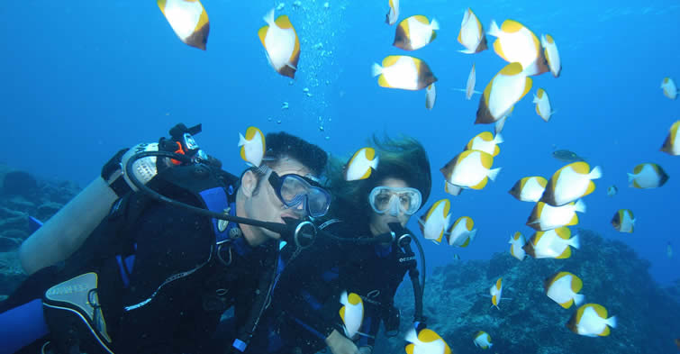 Guam - Divers with Butterflyfish