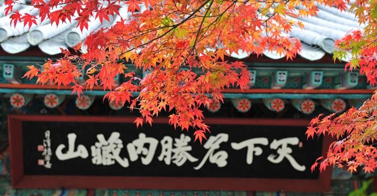 Korea - autumn foliage in Mt. Naejangsan, Jeollabuk-do
