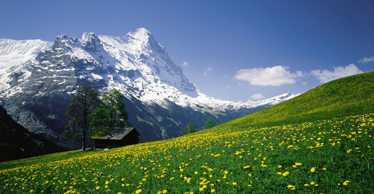Switzerland - Bernese Oberland (spring)