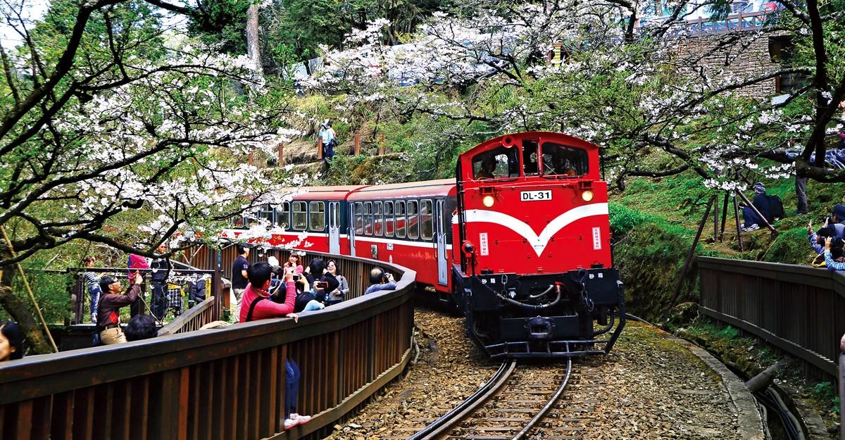 Taiwan - 阿里山櫻花火車