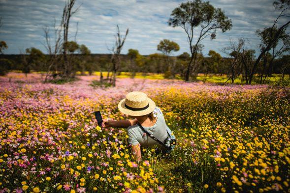 Australia- Coalsearn Conservation Park, WA.1