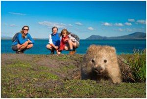 Read more about the article Top 5 Cutest Animals in Australia